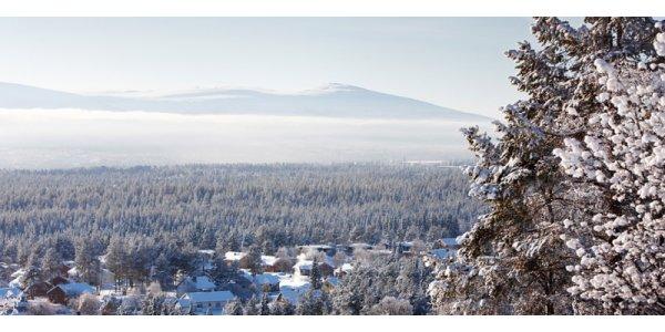 World in Property önskar en God Jul och ett Gott Nytt År!