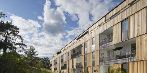 2025 byggs hälften av alla flerbostadshus i trä