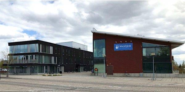 Diös fortsätter förvärvsräd i Borlänge