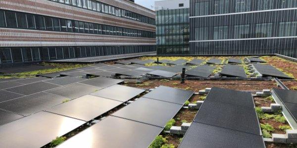 Solceller startklara på Campus Solna